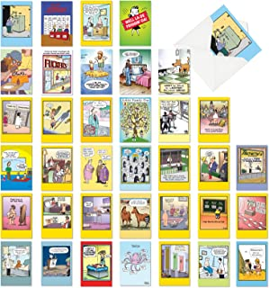 Favorite Toons Collection - 36 Adult Mixed Occasion Greeting Cards with Envelopes (4.63 x 6.75 Inch) - Bulk Assortment of Comic Cartoon Notecards - Funny Boxed Note Card Set AC6740XXG-B1x36