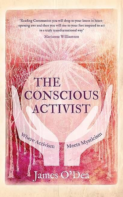 The Conscious Activist: Where Activism Meets Mysticism (English Edition)