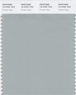 PANTONE SMART 15-4702X Color Swatch Card, Puritan Gray