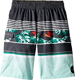 Rip Curl Kids - Sessions Volley Boardshorts (Big Kids)