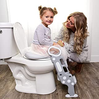 potty chair or toilet seat
