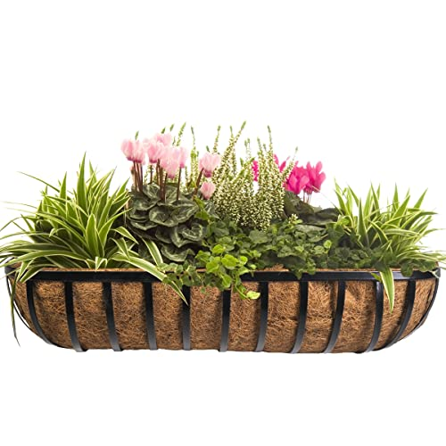 55b1fabe8f7 CobraCo HTR36-B 36-Inch English Horse Trough Planter