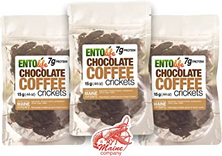 Roasted Edible Crickets - Chocolate Coffee - New Larger Size