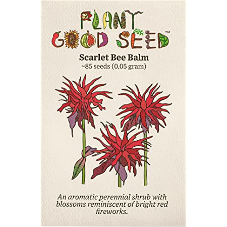 Scarlet Bee Balm (Monarda didyma) Flower Seeds (~85): Non-GMO, Heirloom, Open Pollinated Seeds from The United States