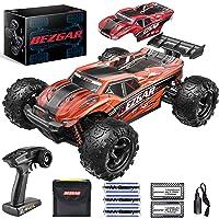 Deals on Bezgar Hobby Grade 1:18 Scale Remote Control Monster Trucks