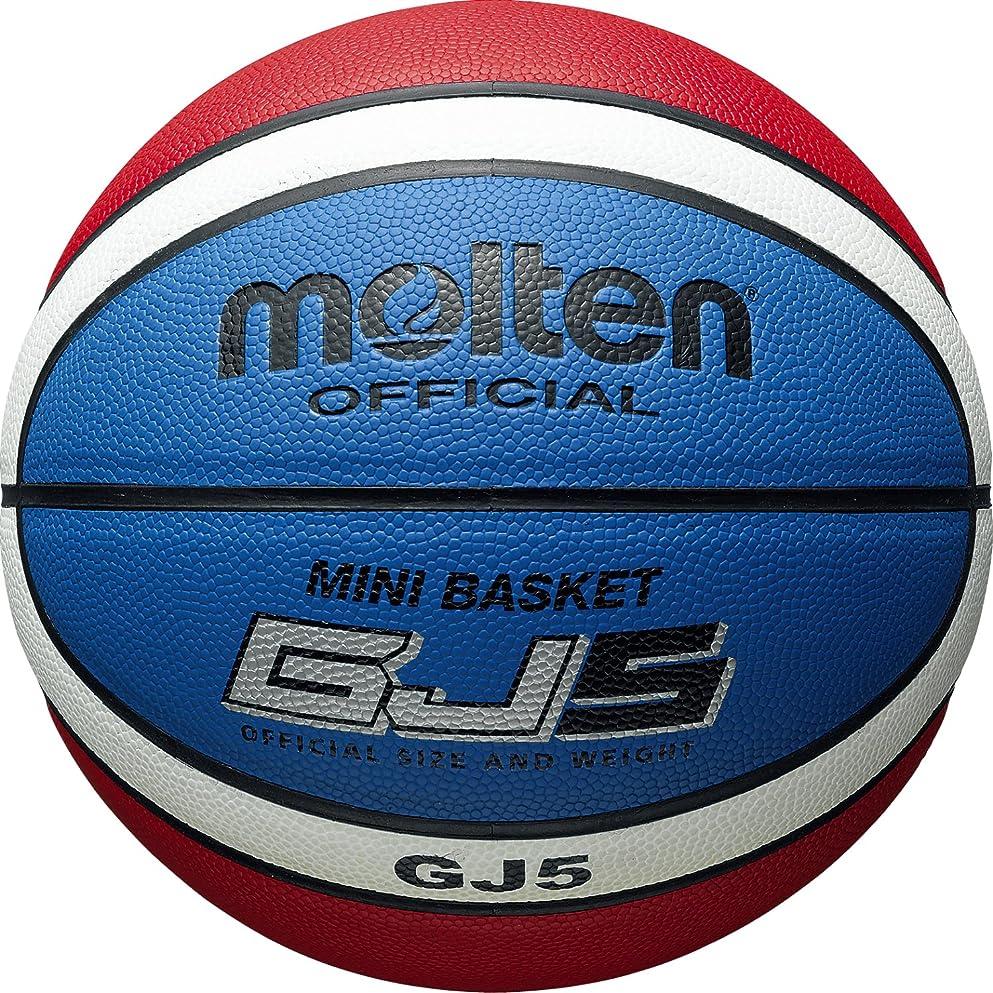 与えるトレイルスイッチmolten(モルテン) ミニバスケットボール用 5号球 BGJ5C