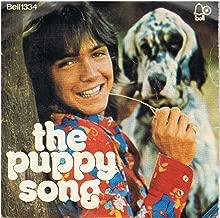 Daydreamer / Puppy Song - David Cassidy 7