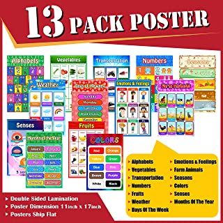 Educational Posters for Kids and Toddlers, Pack of 13 Large Laminated (11 X 17) Early Learning Posters for Preschool Homes...