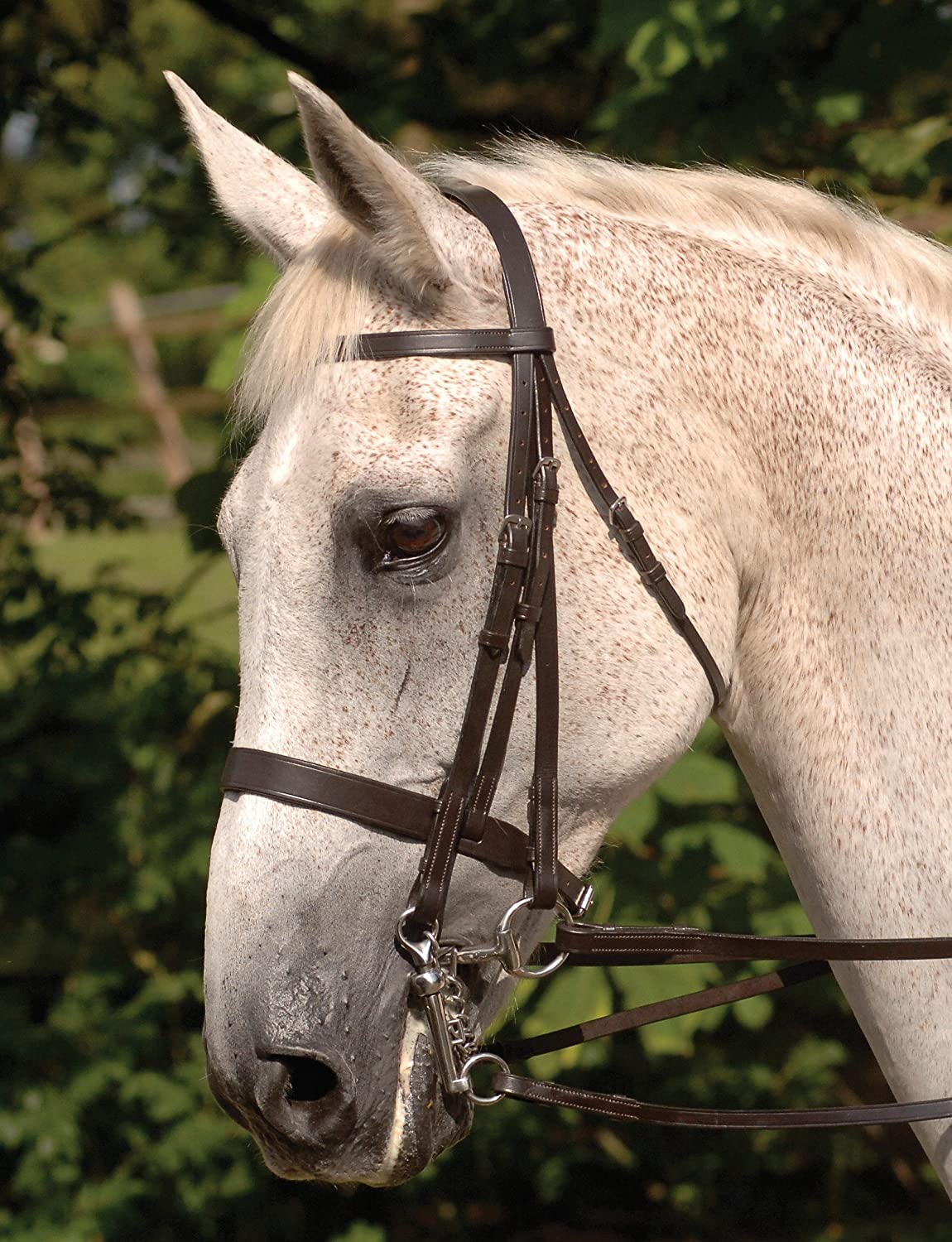 Cottage Craft Windsor Double Bridle