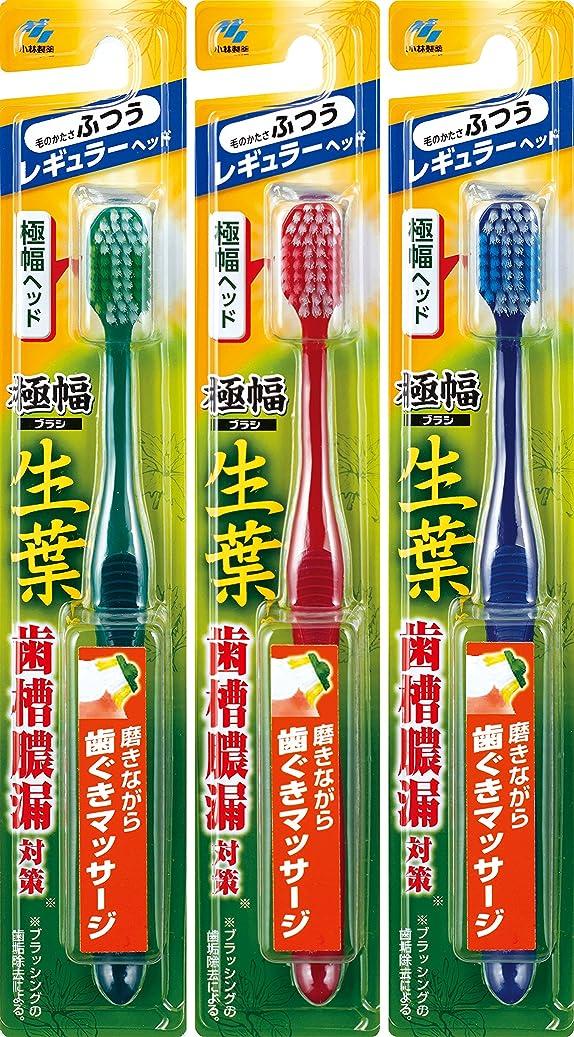 波紋最高手がかり【まとめ買い】生葉(しょうよう)極幅ブラシ 歯ブラシ レギュラーヘッド ふつう×3個