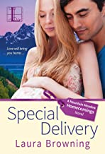 Special Delivery (Mountain Meadow Homecomings Book 1) (English Edition)
