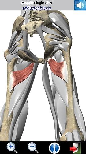 『Visual Muscles 3D』の7枚目の画像