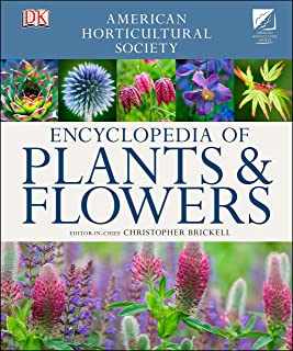 Best pictures of plant propagation Reviews