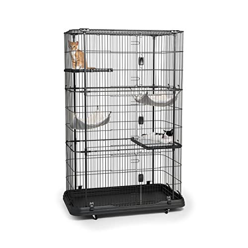Cat Enclosures: Amazon com
