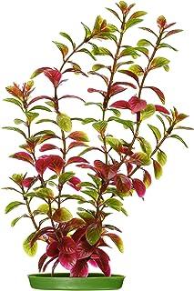 Marina Aquascaper Red Ludwigia Large Plant, 12-Inch