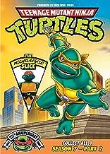 Teenage Mutant Ninja Turtles: Season 7, Pt. 2 - The Michelangelo Slice