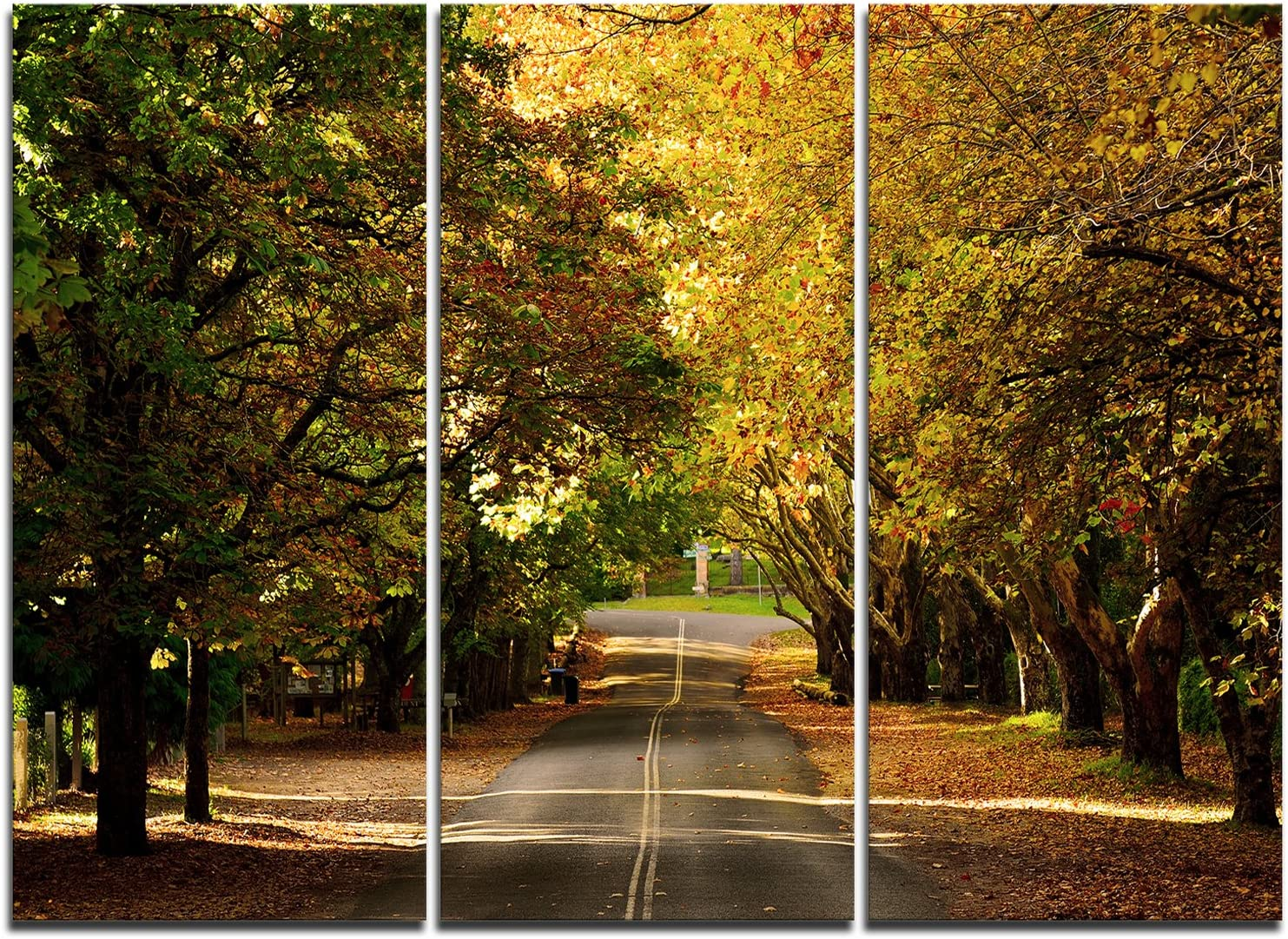 Designart Road Through Beautiful Art Jacksonville Mall Green Print Trees-Landscape Our shop OFFers the best service