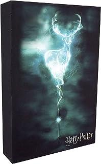 Official Harry Potter Patronus Luminart Light | Optical Illusion Night Light & Canvas Art Lamp | Great for Kids , Bedroom...