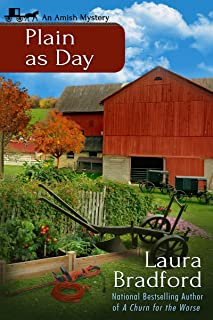 Plain as Day: An Amish Mystery Short Story