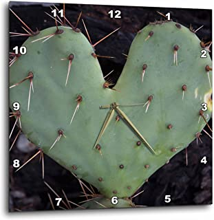 e29bdb4b45b 3D Rose USA - Texas - Guadalupe Mountains. Heart-Shaped Prickly-pear Cactus