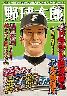 野球太郎No.029 2018ドラフト総決算&2019大展望号