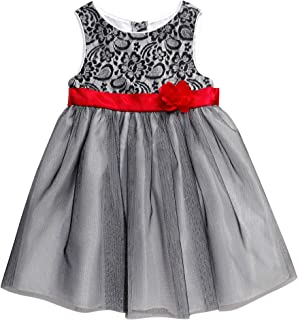 eef858129ce Youngland Baby Girls  Lace Bodice Sparkle Tulle Dress