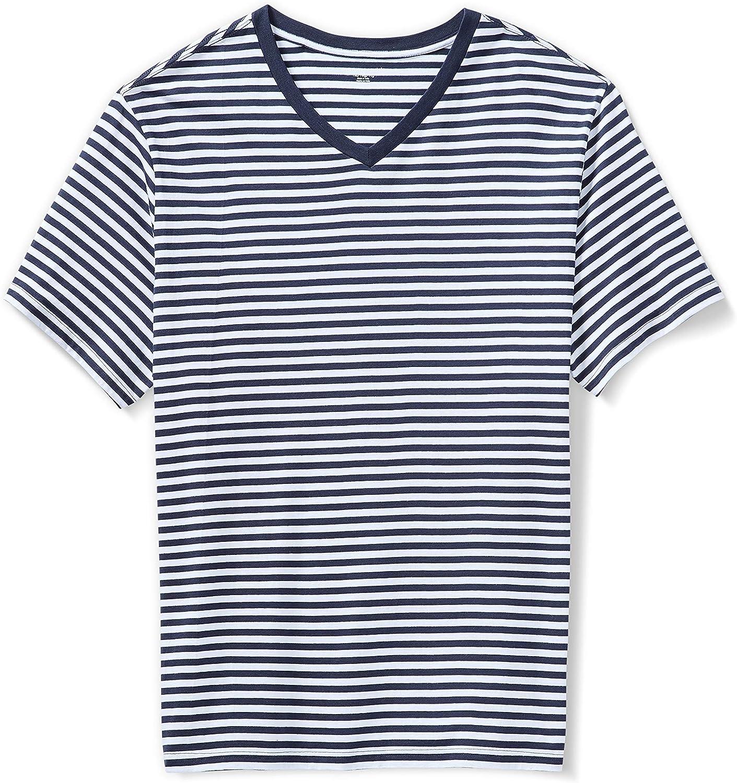Men's Big & Tall Short-Sleeve Stripe V-Neck T-Shirt fit by DXL