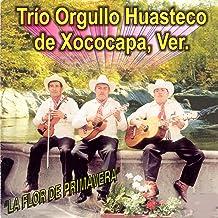 Mi Lindo Estado de Veracruz