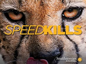 Speed Kills Season 1