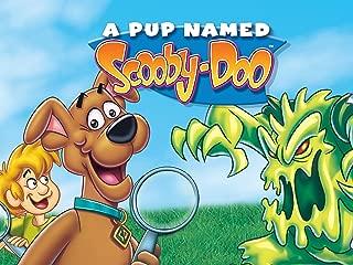 Pup Named Scooby Doo - Season 3