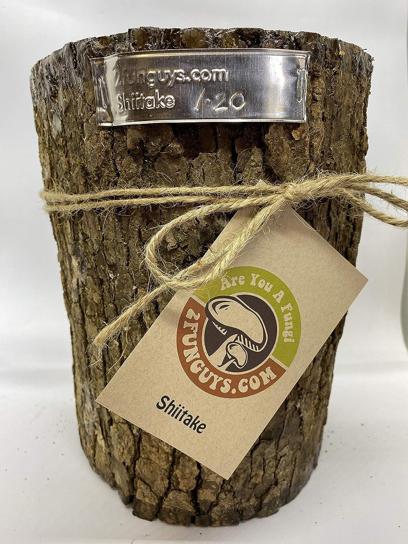 Mr. Stumpy security Mushroom Log DIY Shiitake Mushrooms You to Max 84% OFF Grow Ready