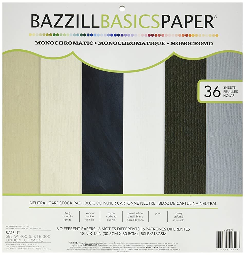 American Crafts Bazzill Basics Mono Cardstock Paper Pads with 36 Sheets, 12