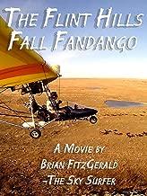 fandango it movie