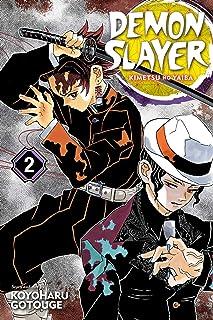 Demon Slayer Kimetsu no Yaiba Vol. 2 It Was You: Volume 2