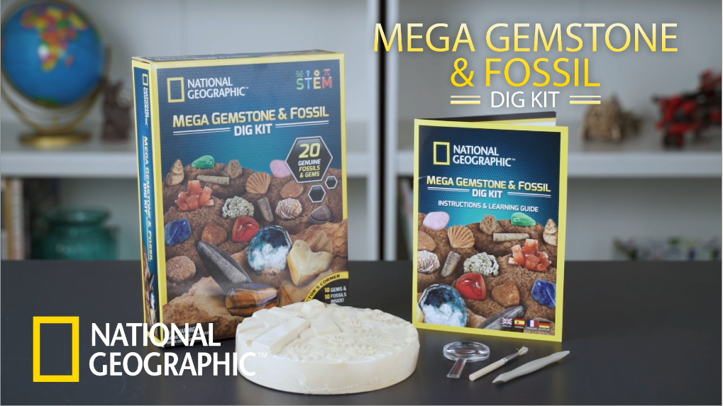 NATIONAL GEOGRAPHIC Mega Fossil and Gemstone Dig Kits – Excavate 20 Real Fossils and Gems, Great STEM Science Gift for…