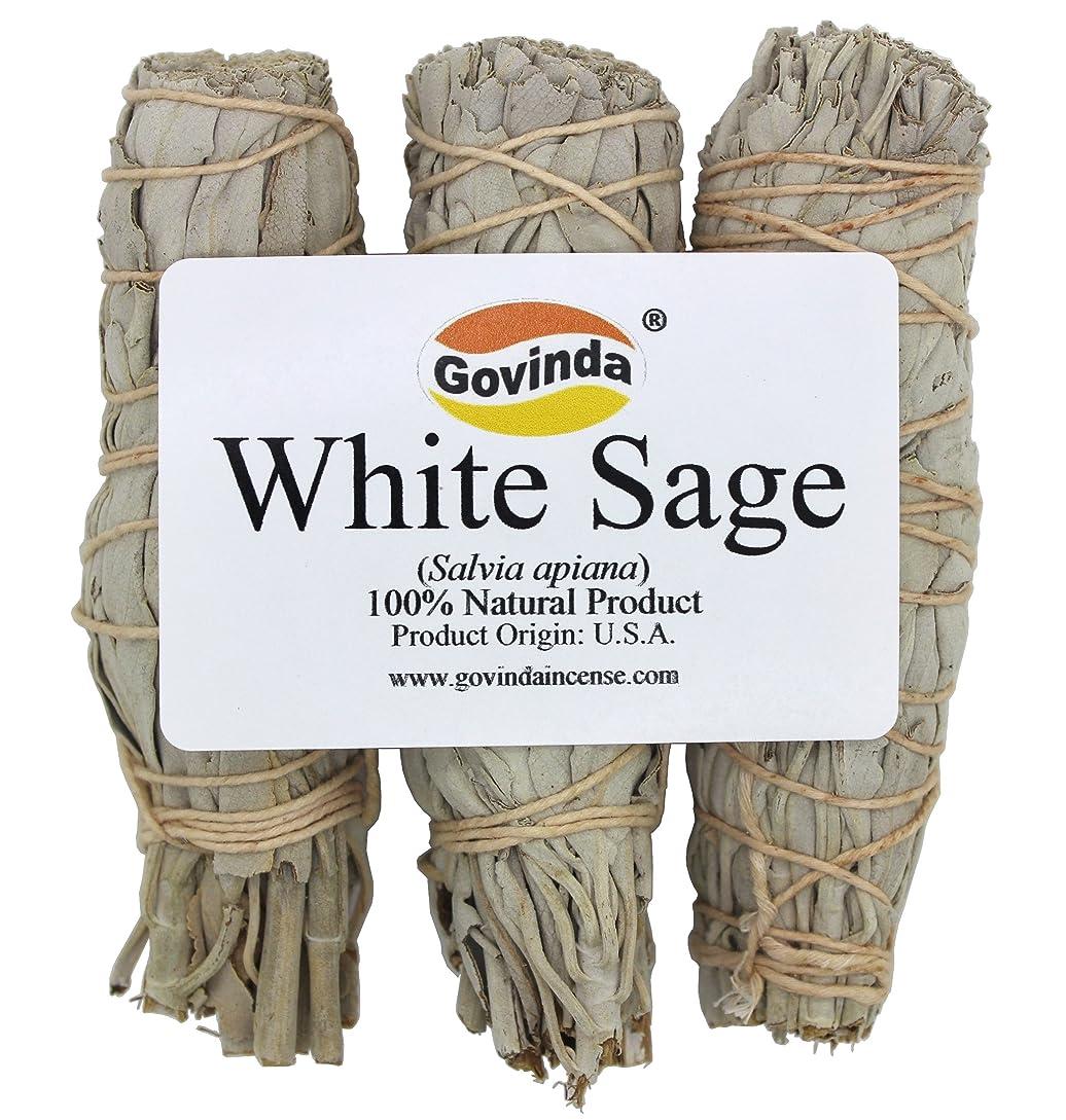 過激派時計回り傑作Govinda - Pack of 3 Mini White Sage Smudge Stick, 10cm Long