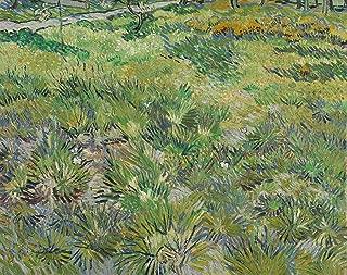Aenx Vincent Van Gogh - Long Grass with Butterflies National Gallery - London 30