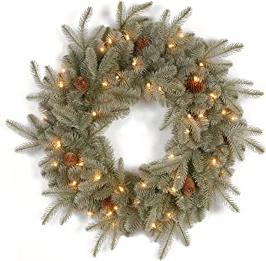 """National Tree 24 Inch """"Feel Real"""" Frosted Artic Spruce Wreath with Cones and 50 Clear Lights (PEFA1-307-24W-1)"""