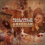 American Blues Roots Duo