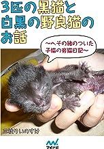 3匹の黒猫と白黒の野良猫のお話~へその緒のついた子猫の育猫日記~