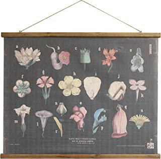 Best creative co op botanical prints Reviews