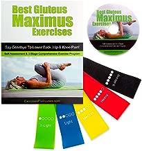 Best Gluteus Maximus Exercises and Glute Toning Band Bundle
