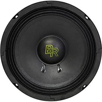 DJ Bass Rockers BRCH8 Loaded 8 Speaker Box with 2X 8 450W Bass Rockers Neodymium Voice Speakers and 2X 300W Chrome Tweeters for Car Home Church and Outdoor Events