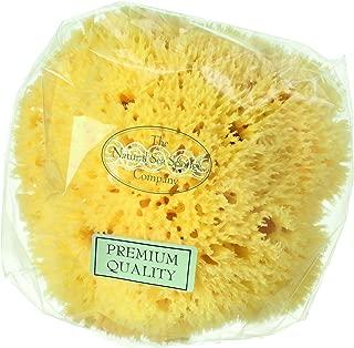 Hydrea London Natural Honeycomb Sea Sponge 5 - 5.5