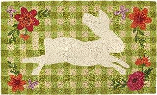 DII Indoor/Outdoor Natural Coir Fiber Spring/Summer Doormat, 18x30, Gingham Bunny