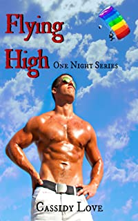 Flying High (One Night Series Book 3) (English Edition)