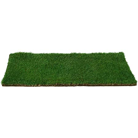 Patio Pet Life Real Grass Potty