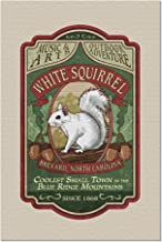 Brevard, North Carolina - White Squirrel - Vintage Sign - Contour 99505 (20x30 Premium 1000 Piece Jigsaw Puzzle, Made in USA!)