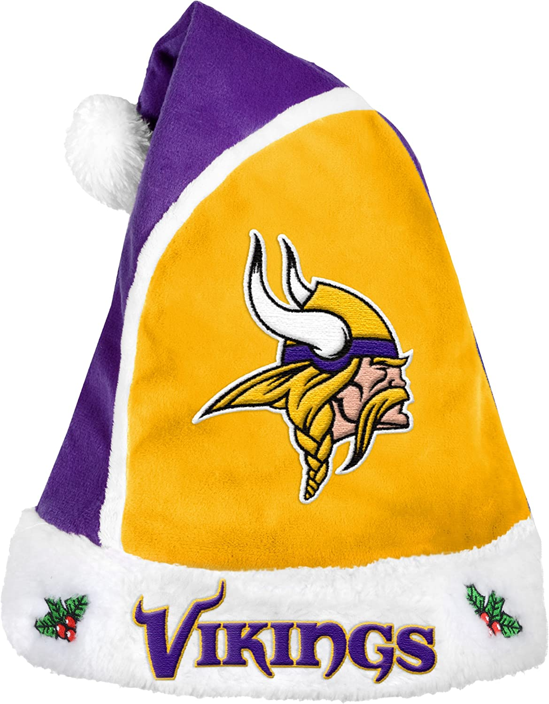 NFL Minnesota Vikings 2015 Basic Santa Hat, Purple