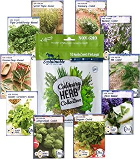 10 Variety Culinary Herb Collection and 96 Page Growing Guide - Non GMO Heirloom Basil, Thyme, Rosemary, Oregano, Parsley, Lavender, Sage, Cilantro, Chives, Dill
